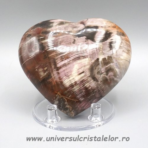 Inima lemn pietrificat